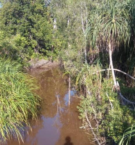 Kondisi sungai kelong, Desa Batu Itam, Senin (15/7/19). Foto: Syamsiar